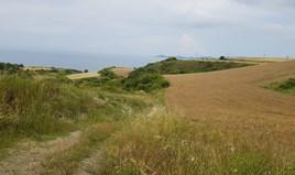地皮 7000 m² 位于阿索斯山(哈尔基季基州)