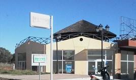 Бизнес 83 m² в Ситония (Халкидики)