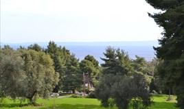 Zemljište 13000 m² na Kasandri (Halkidiki)