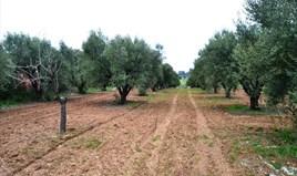 Zemljište 3068 m² na Kasandri (Halkidiki)