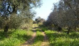 Land 24000 m² in Corfu